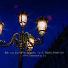 Venice Morning Light