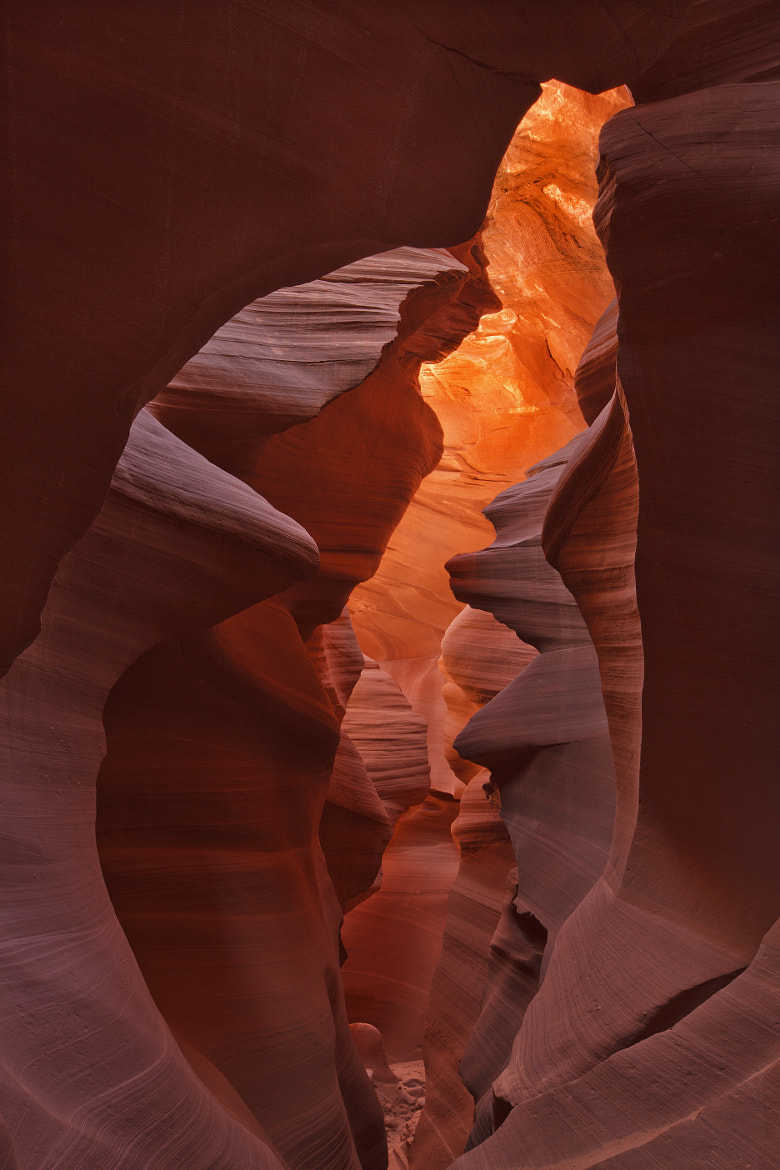 Photograph Antelope Canyon by Gary Thompson on 500px