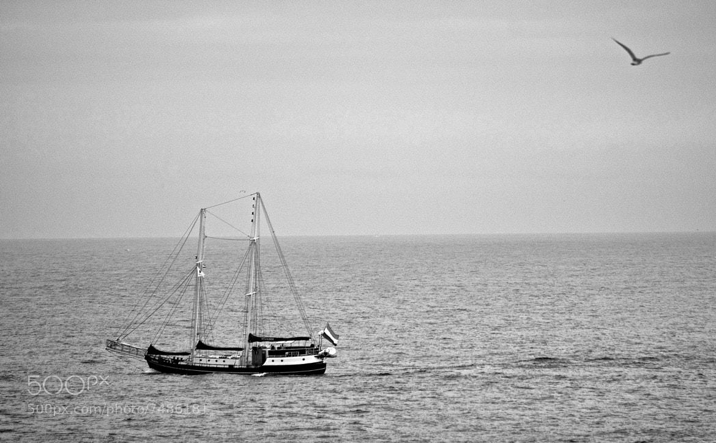 Photograph sailing by Luis Martínez on 500px