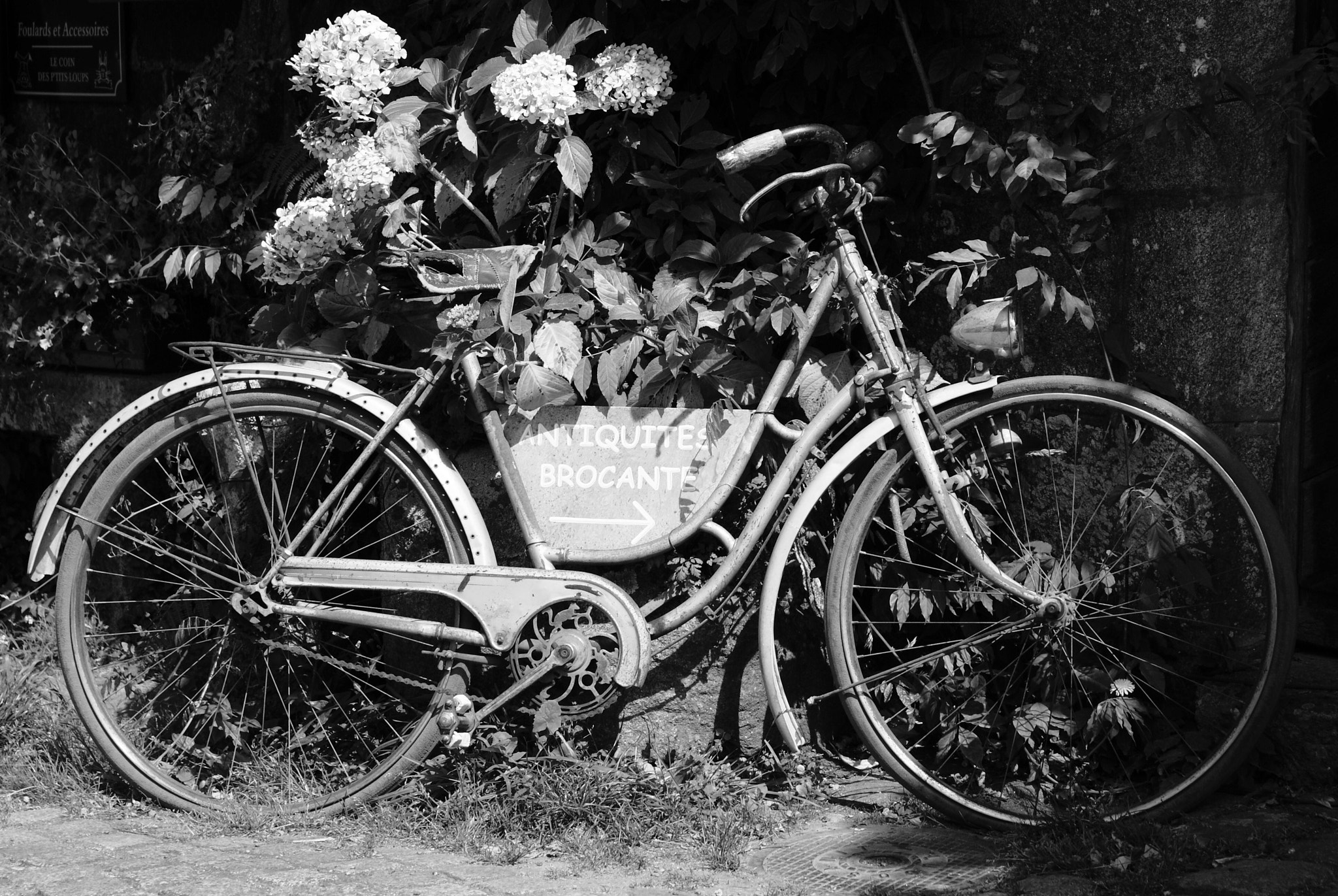Photograph Vieux Cycle by David Nickson on 500px