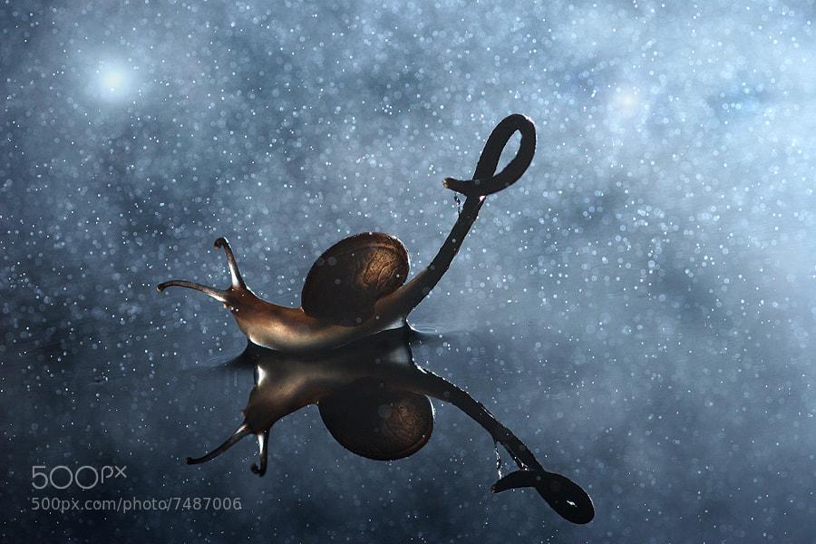 Space by Vadim Trunov (vadimtrunov) on 500px.com