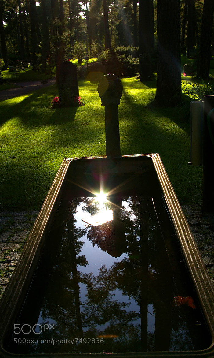 Photograph Cemeteries are beautiful by Jennifer Åberg on 500px