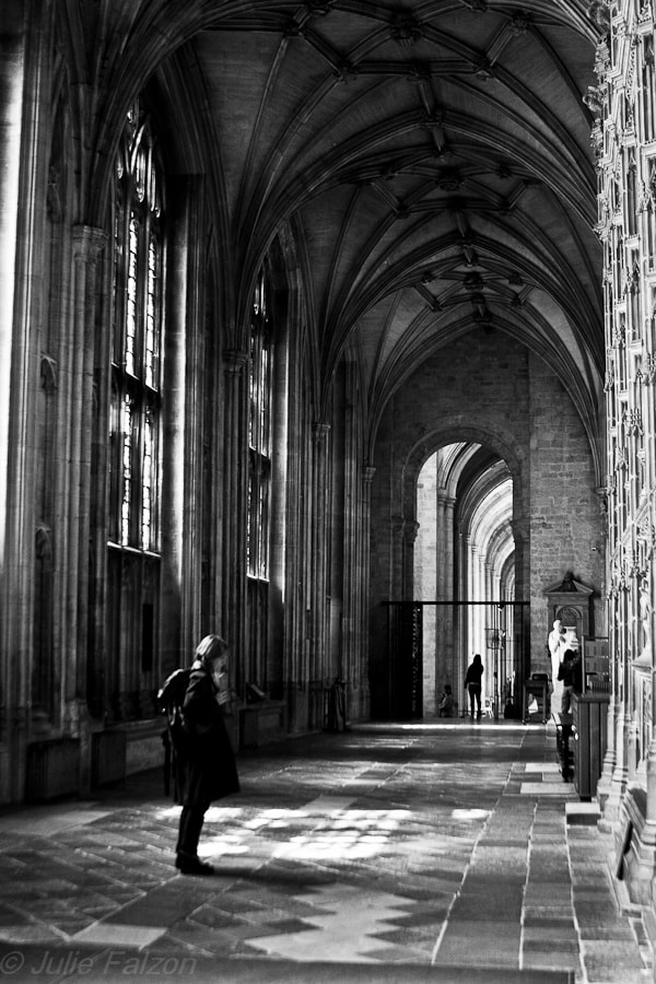 Winchester Cathedral, May 2012.