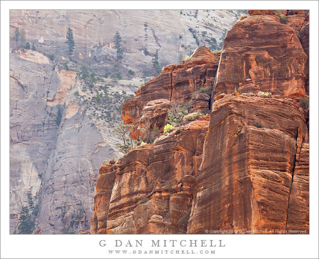 Photograph Zion Cliffs by G Dan Mitchell on 500px