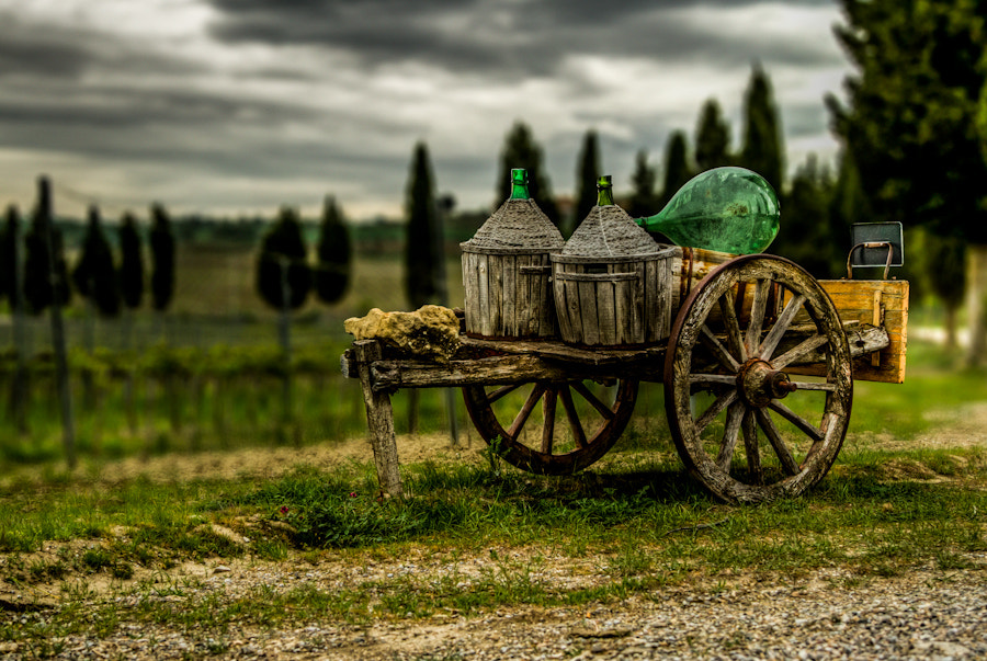 Photograph Wine Waggon by Bernhard Minatti on 500px