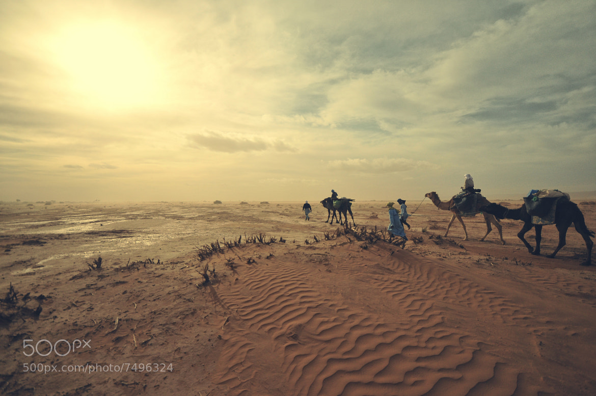 Photograph Sahara - 1 by Aurélien  Villette on 500px