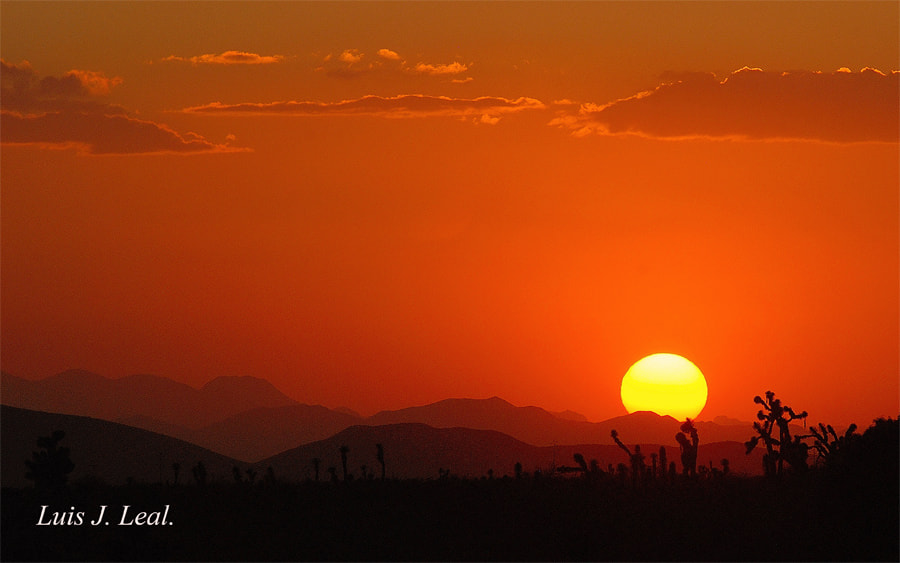 Photograph Sunset In Desert by Luis Jaime Leal on 500px