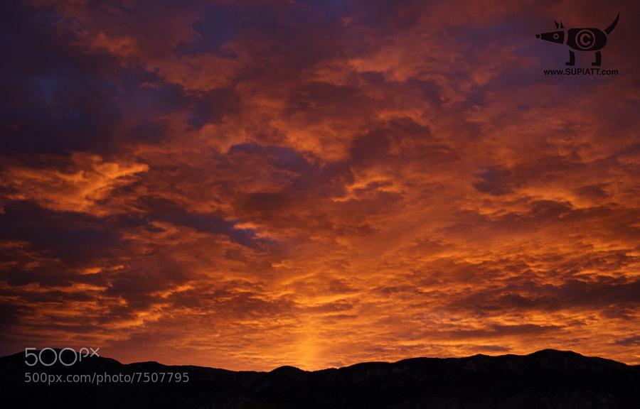 Sunrise in Intense Orange