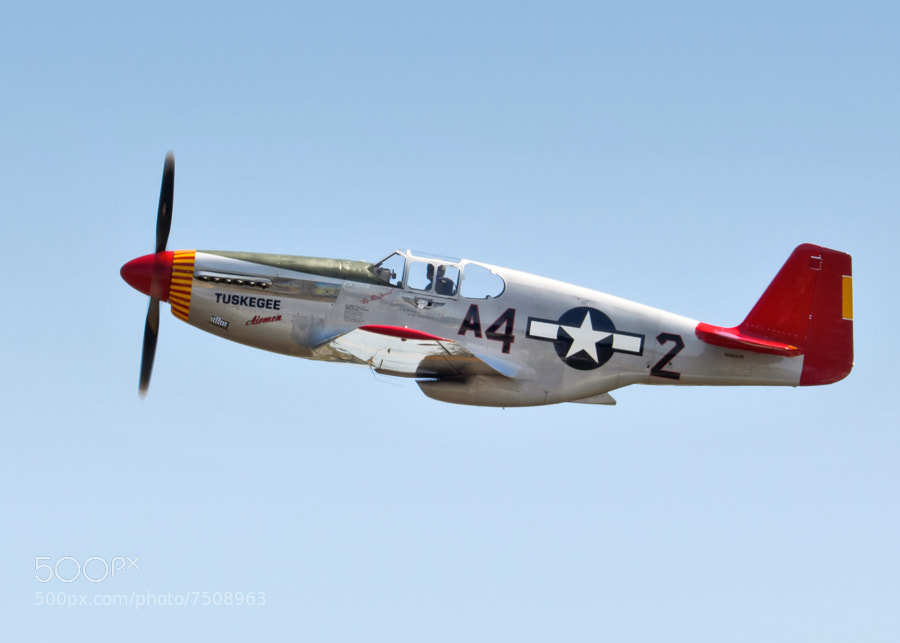 "P-51C Mustang ""Red Tail"" in side profile. 2012 Robins AFB"