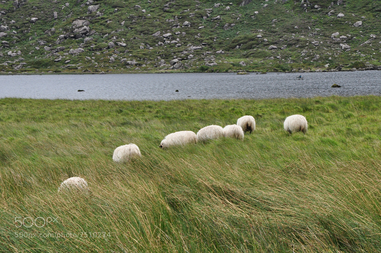 Photograph ireland by helmut flatscher on 500px