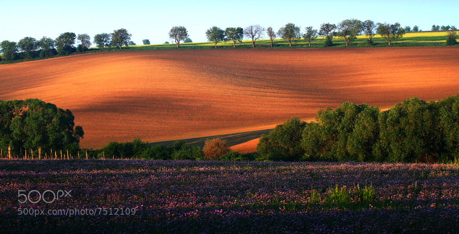 Photograph Moravian countryside by Uhler on 500px