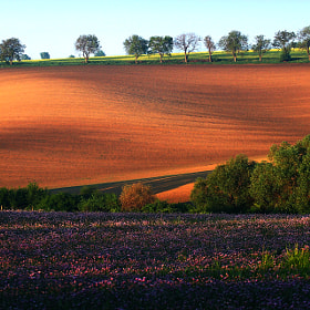 Moravian countryside by Uhler ) on 500px.com