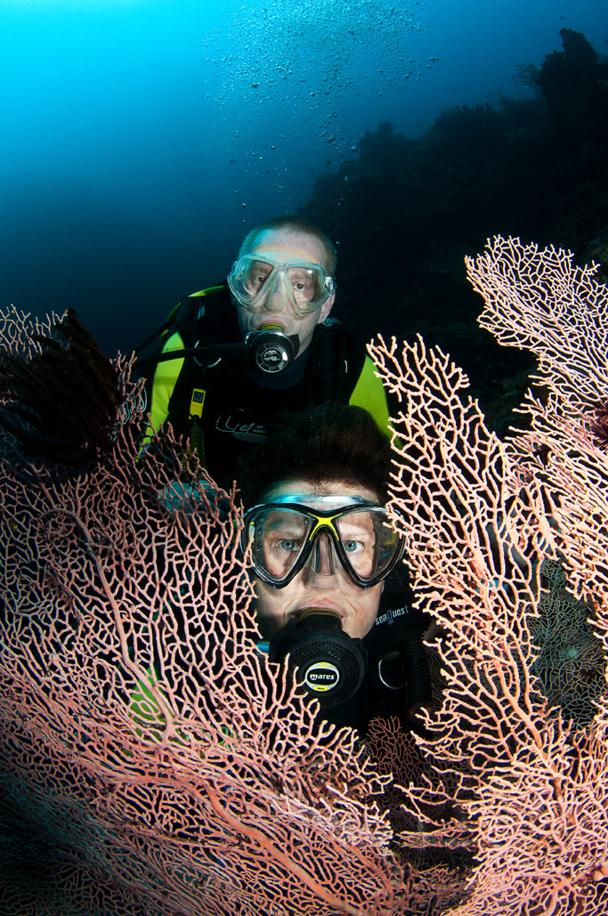 Photograph Divers and Fan by Nigel  Wade on 500px