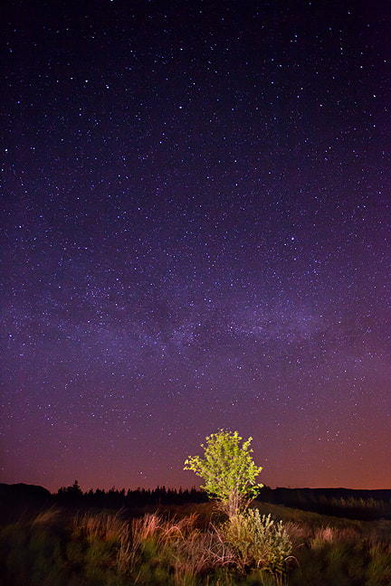 Photograph Under The Stars by Kelvin Gillmor on 500px