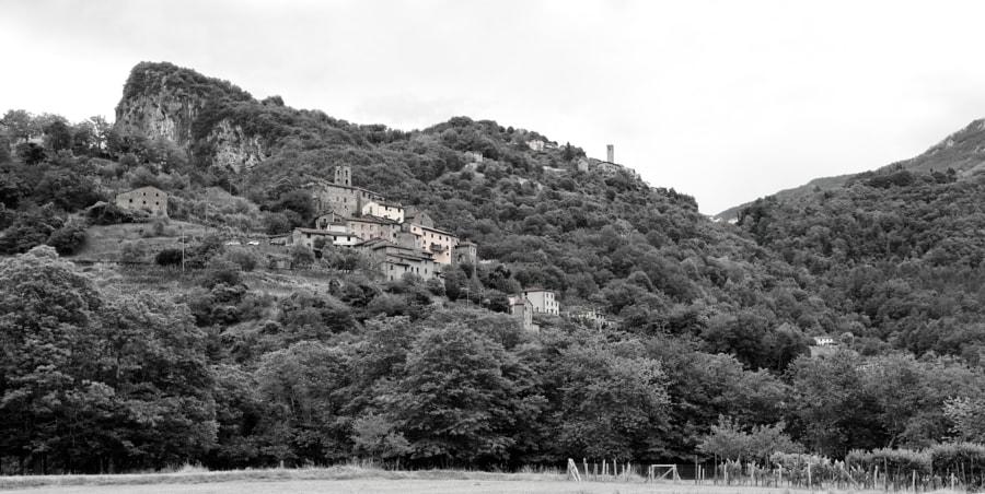 Scesta & Casoli - Toscana
