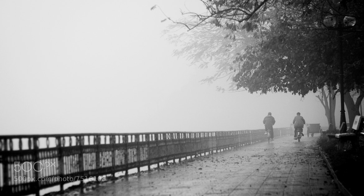 Photograph A foggy day  by tung nguyencanh on 500px
