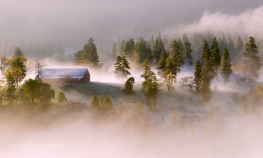 Photograph A Foggy Morning by Deb Harder on 500px