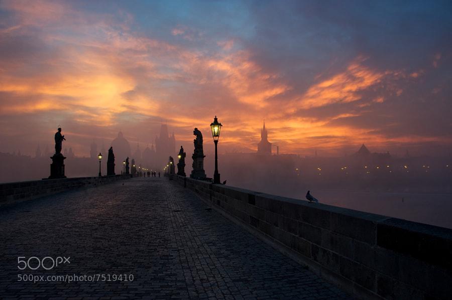 ...dawn... by Markus Grunau (MarkusGrunau) on 500px.com