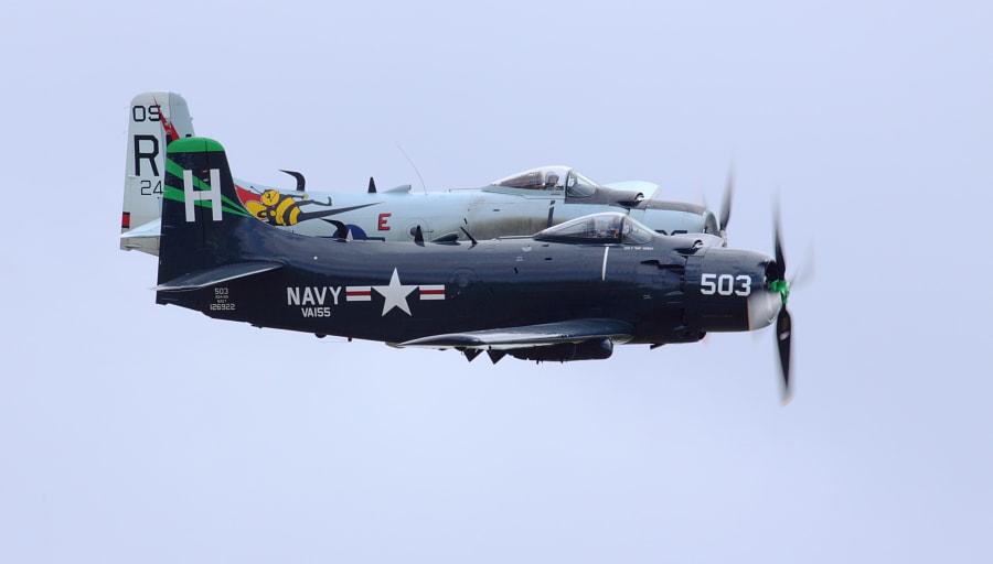 Skyraider Pair