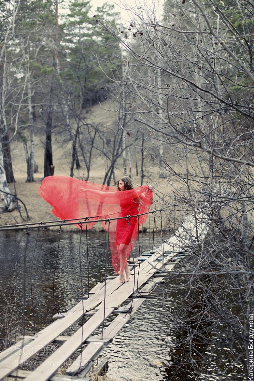 Photograph bridge by Katerina-1992 on 500px