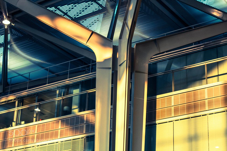 Photograph Trident by Alexandre  Motais De Narbonne on 500px