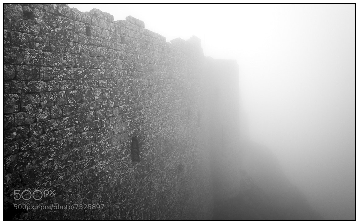 Photograph Chateau de Peyrepertuse by Peter Drechsler on 500px