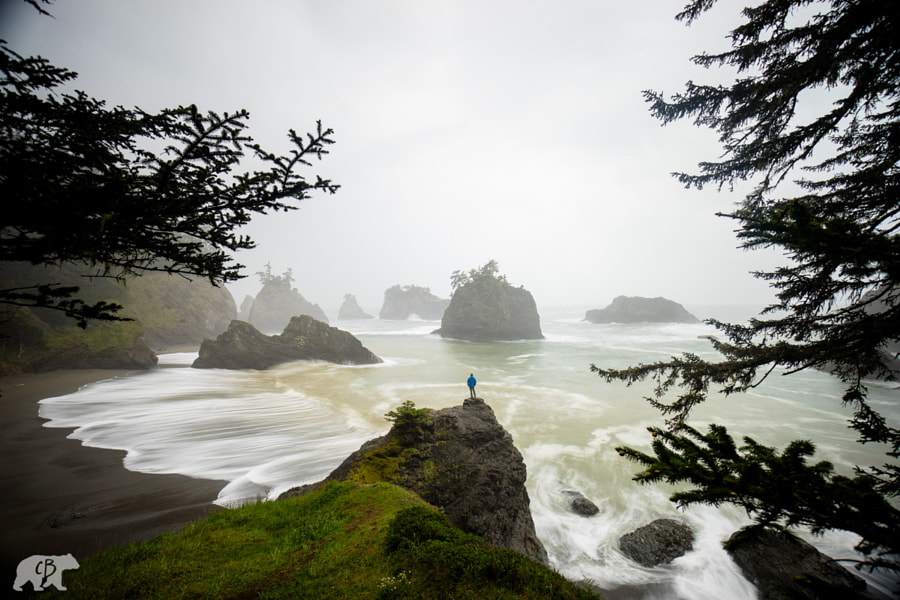 Photograph Posidon's Scuptures by Chris  Burkard on 500px