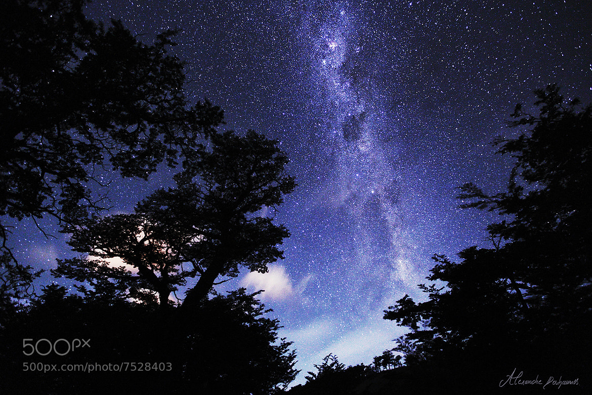 Photograph Patagonian Night by Alexandre Deschaumes on 500px