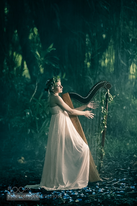 Photograph Harp girl by Kunal Jankee on 500px