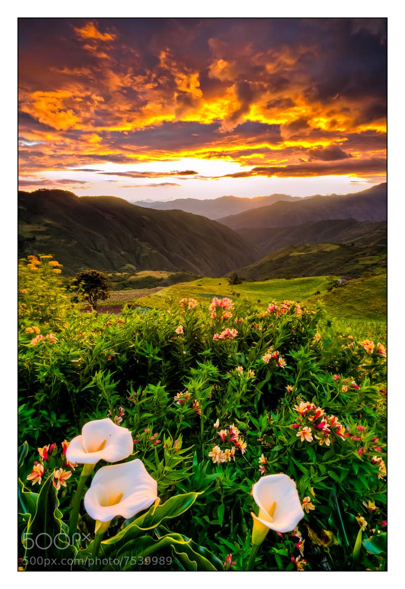 Photograph Villonaco Sunset by Fernando Salas on 500px