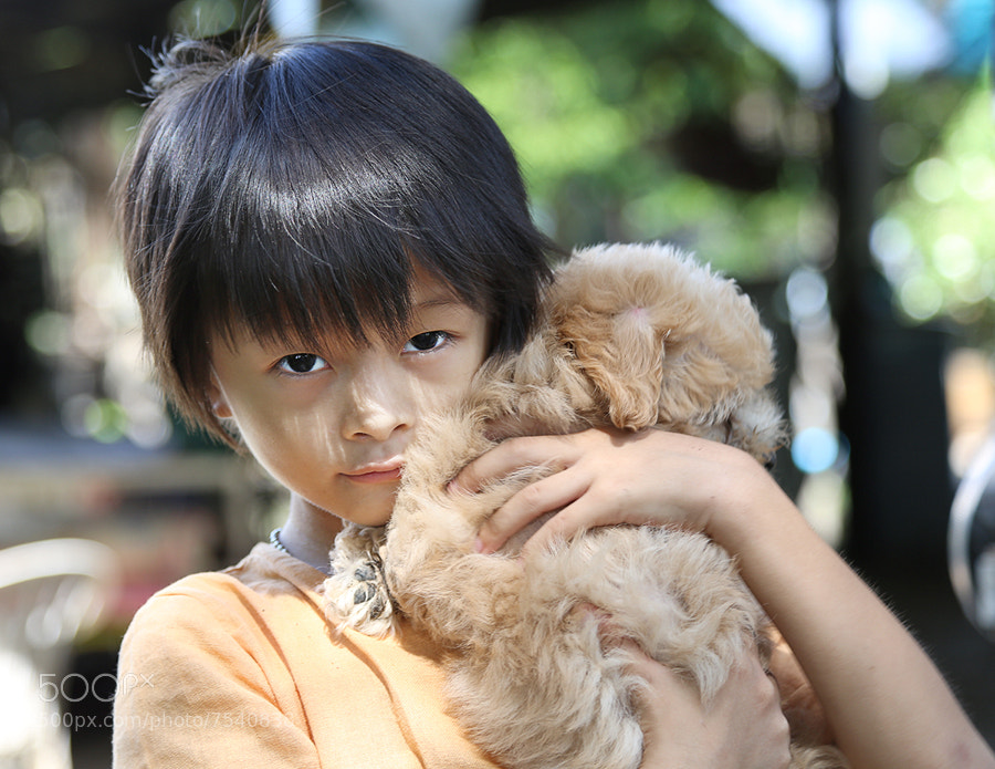 Photograph a boy and a dog by Prachit Punyapor on 500px