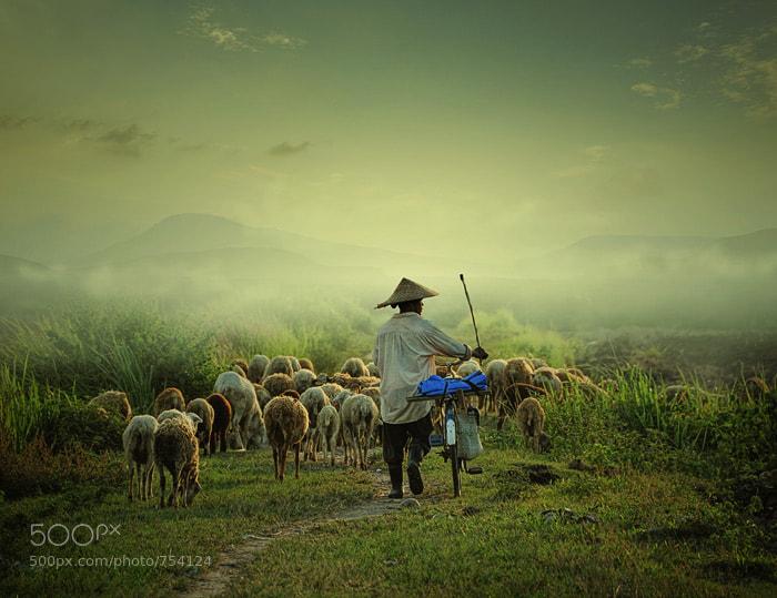 Photograph go home by Teuku Jody  Zulkarnaen on 500px