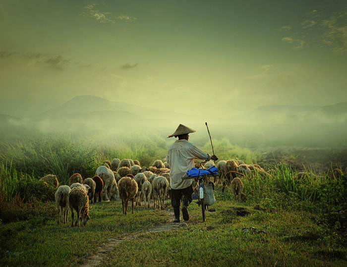 Photograph go home by Teuku Jody  Zulkarnaen on 500px