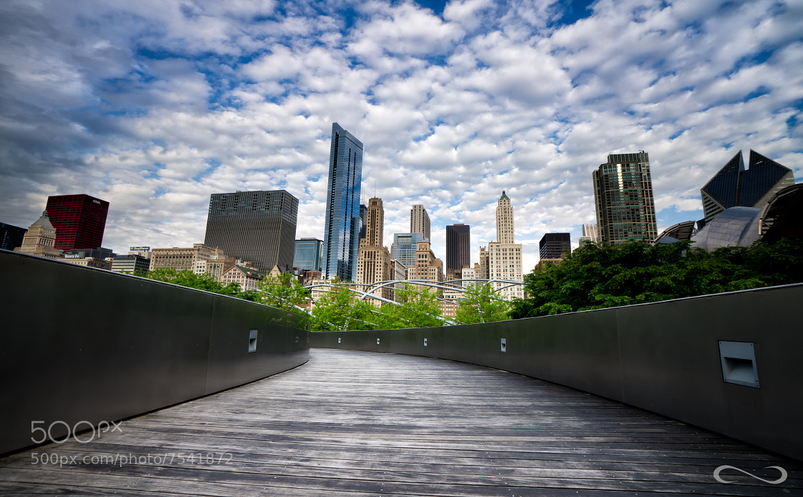 Photograph Beyond the Path by Chase Morgan on 500px