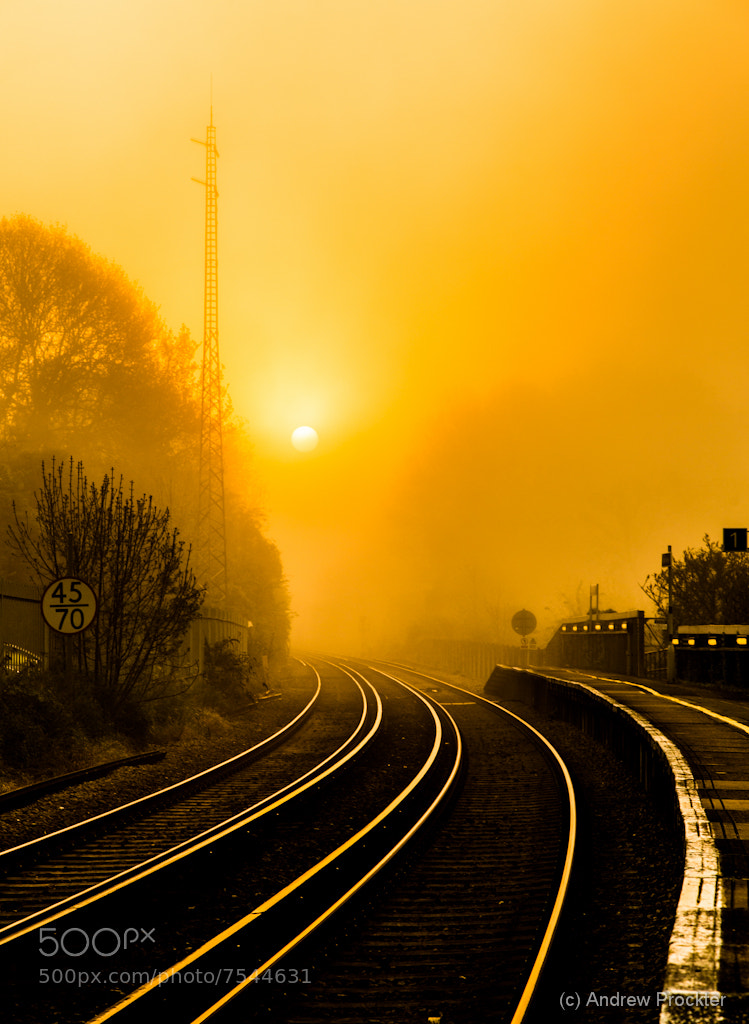 Photograph Tracks at dawn by Andrew Prockter on 500px