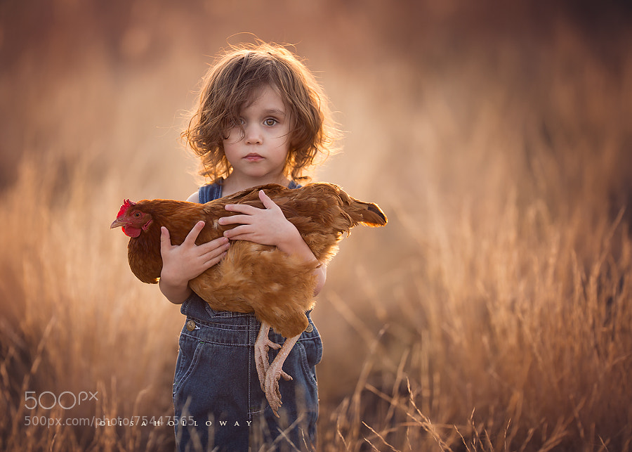 Natural light Photography - Photograph Elliott & His Hen by Lisa Holloway on 500px