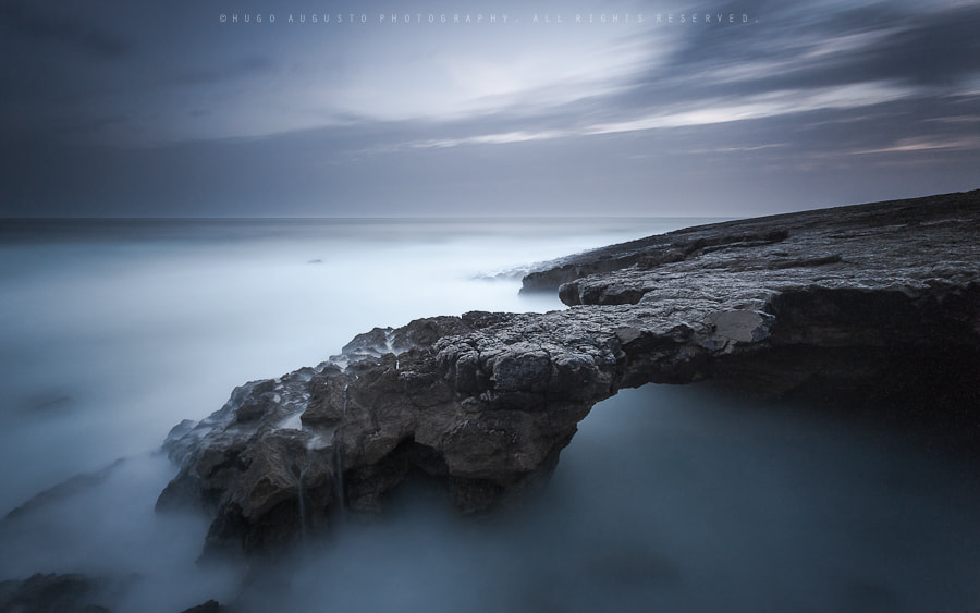 Photograph Devil's Claw by Hugo Augusto on 500px