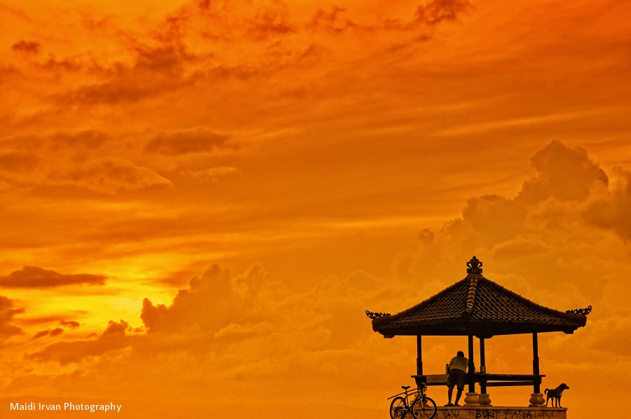 Photograph The Golden Sky by Maidi Irvan on 500px