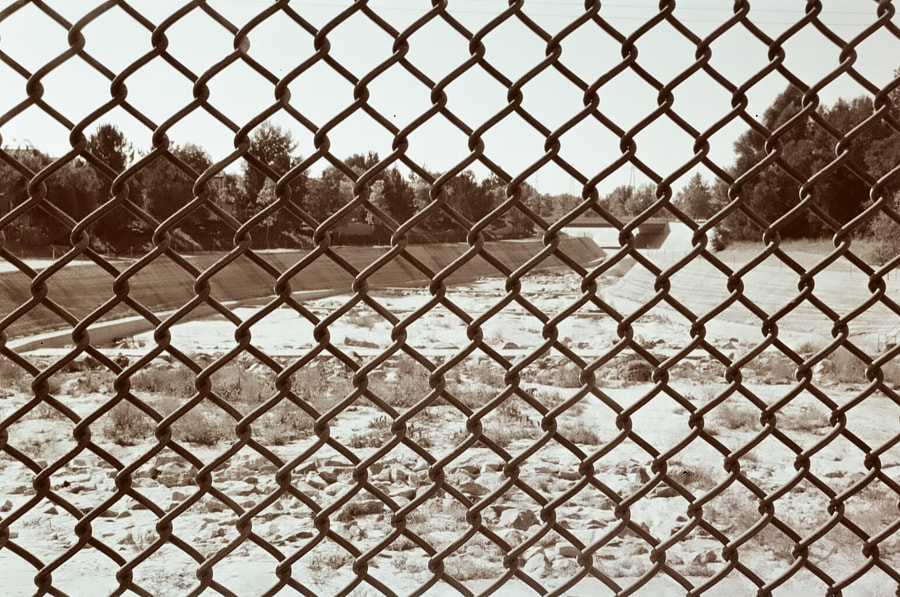 Through the Fence by Michael Stum on 500px