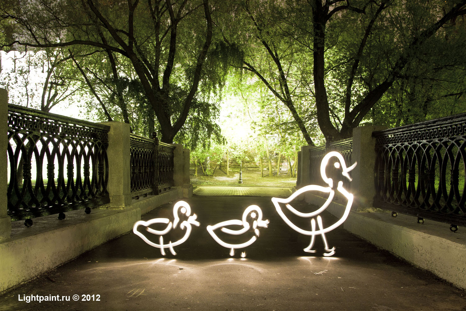 Photograph Light painting (фризлайт) - a family of ducks by Lightpaint.ru Moscow, Russia on 500px