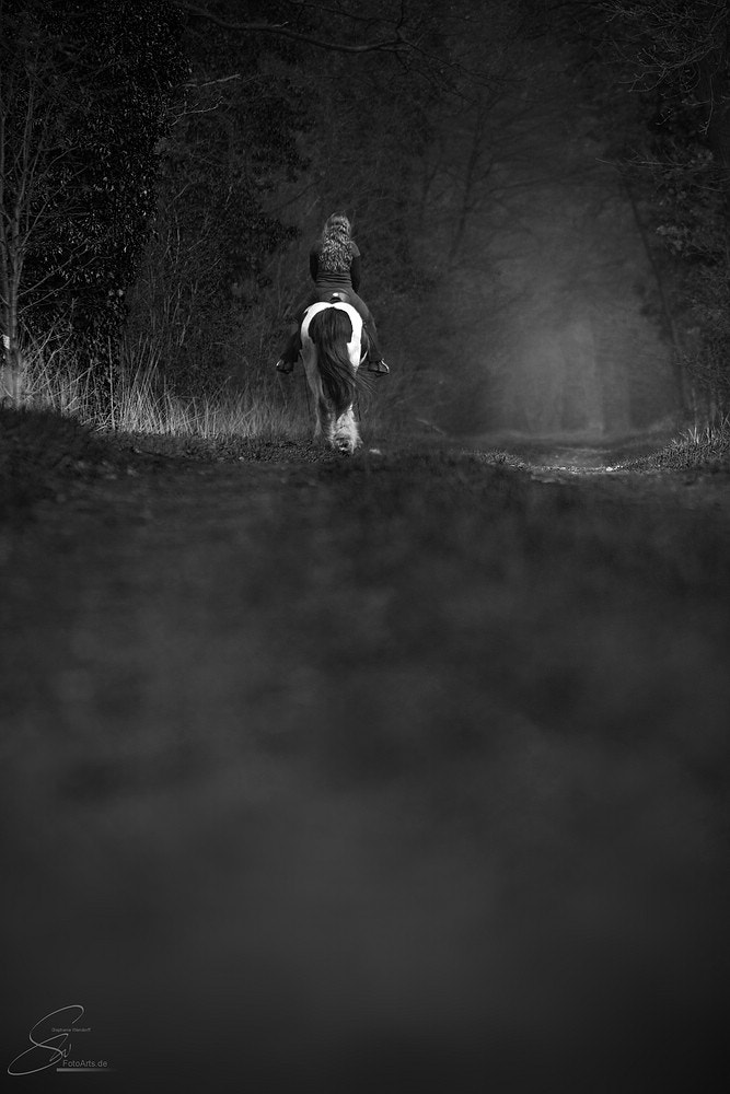 Photograph Way home by SW-FotoArts on 500px