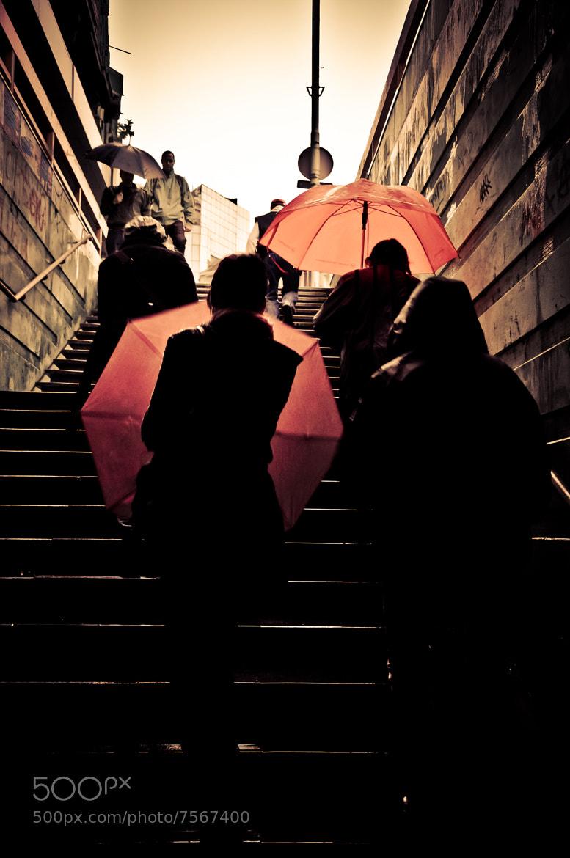 Photograph How far my dream is gone...? by Sanja Kosanović on 500px