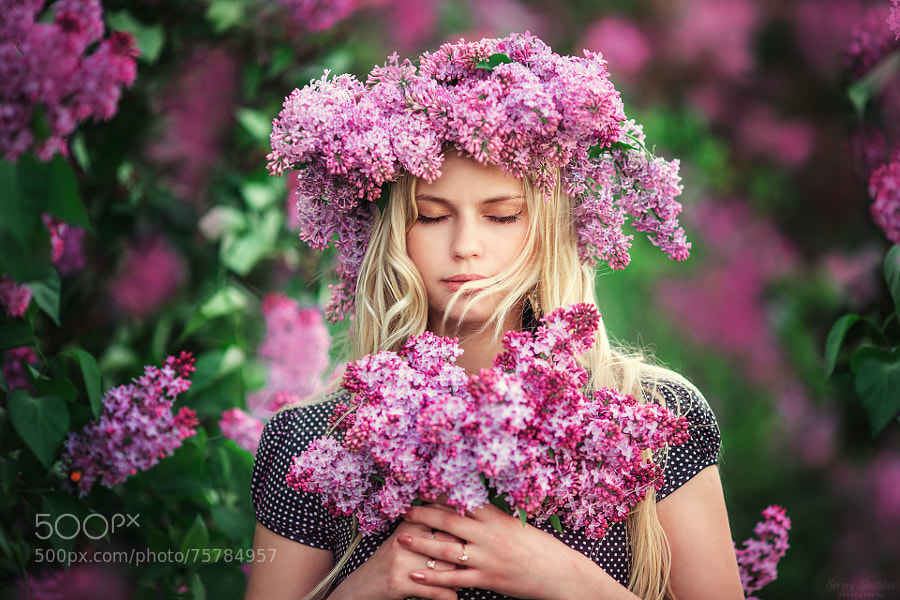 Photograph Lilac dreams by Sergey Shatskov on 500px