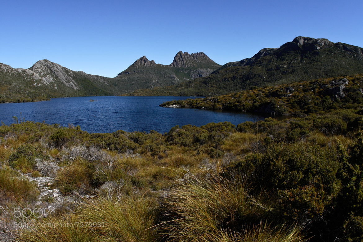 Photograph Cradle Mountain - Tasmania by Colin Ewington on 500px
