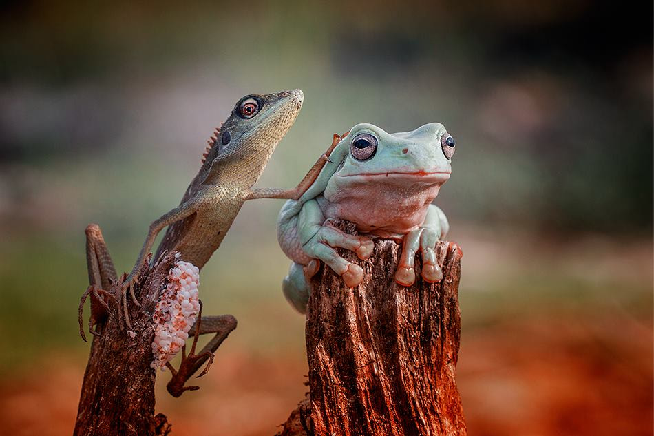 Photograph with friend by  Hendy Mp on 500px