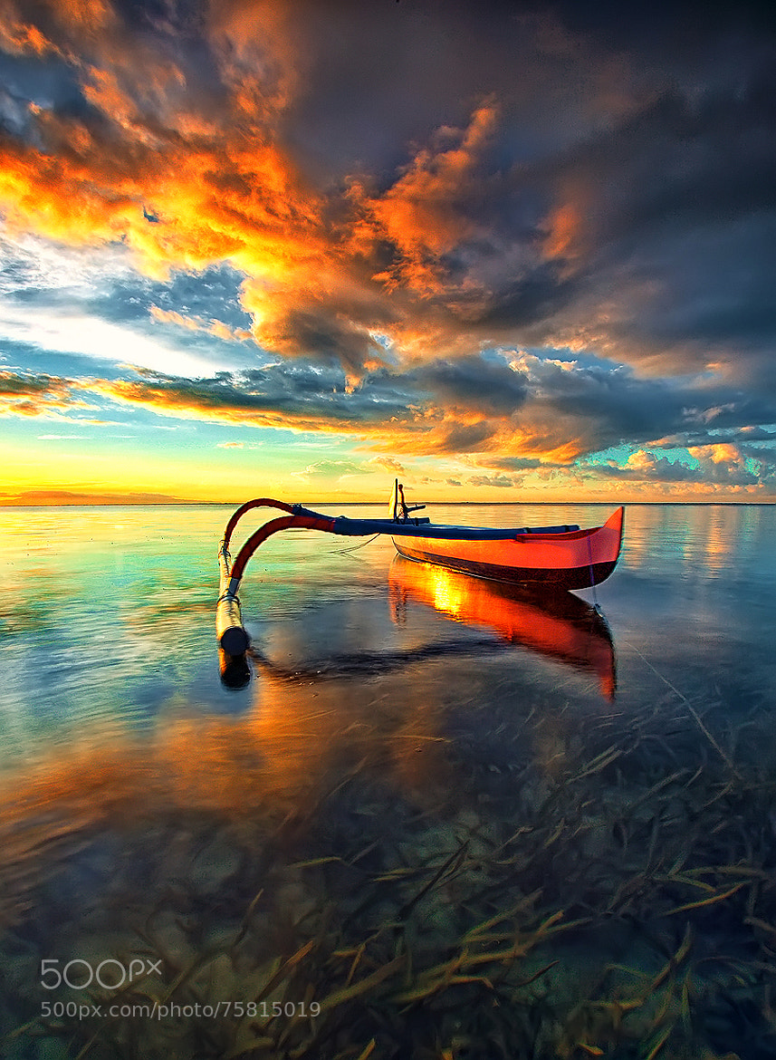 Photograph Pinky by Agoes Antara on 500px