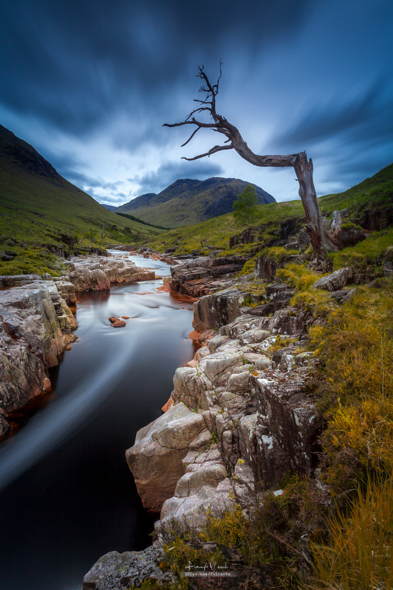 Photograph Where the River Goes by Fernando Vicente on 500px
