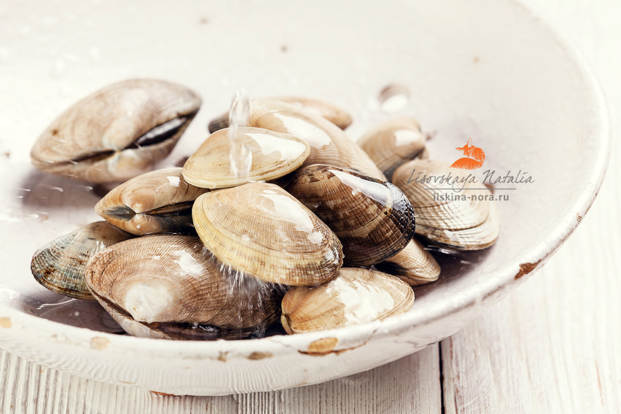 Raw Shells vongole in vintage ceramic colander and falling drops
