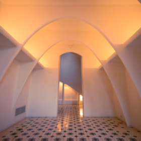 Upper attic of Casa Batlló, Barcelona, Spain