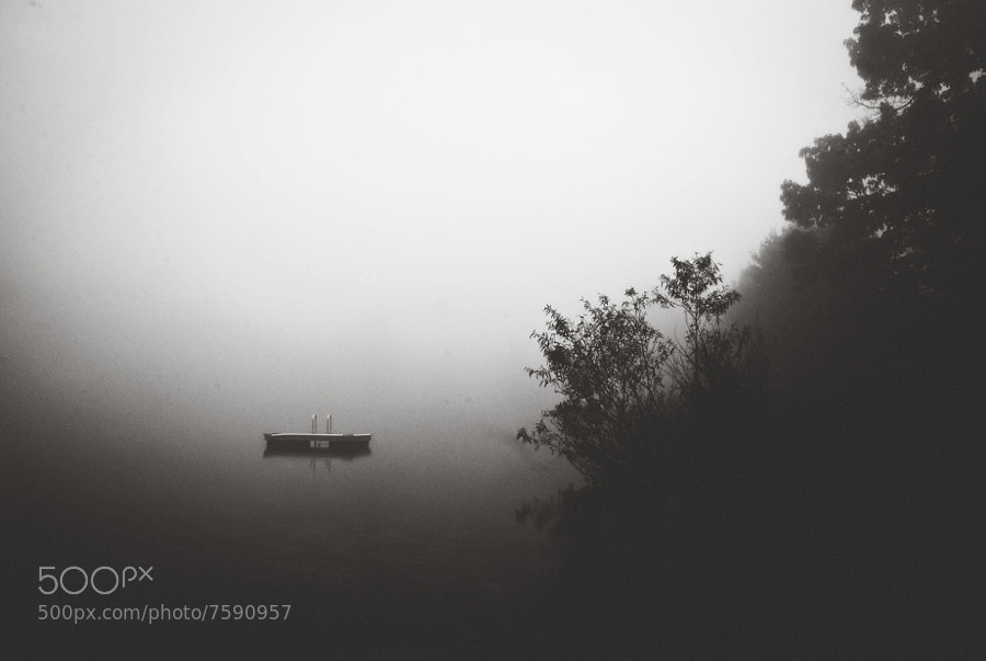 Photograph Mist by Magdalena Gonciarz on 500px